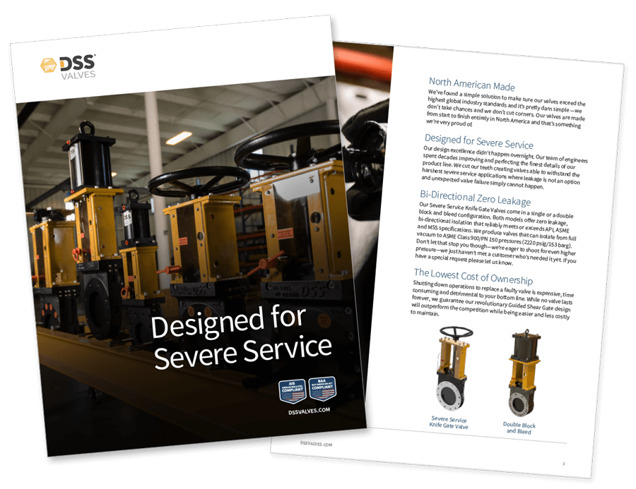 DSS Intro Product Brochure