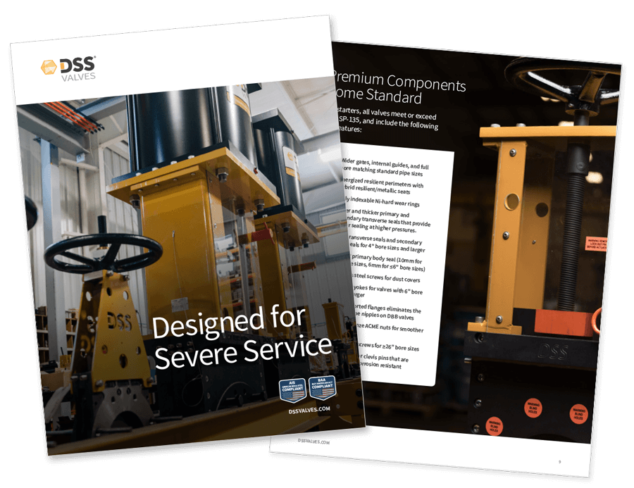 DSS Product Brochure